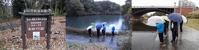 長池公園見学