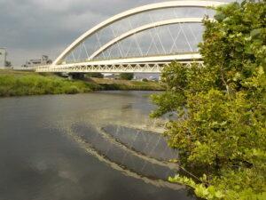 鶴見川の様子