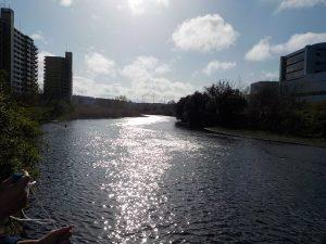 鶴見川の様子2