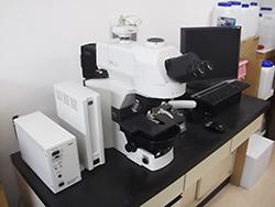 微分干渉付落射蛍光顕微鏡